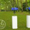 Location colonnes blanches bordeaux nantes tours paris poitiers la rochelle