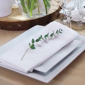SERVIETTES DE TABLE